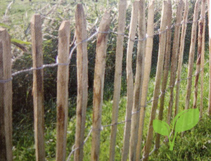 Engels hekwerk van kastanjehout