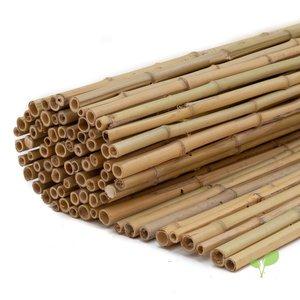 Bamboematten 180 cm hoog